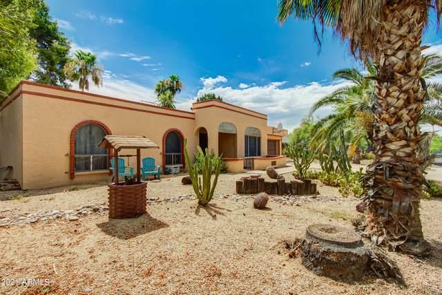 14419 N 5TH Street N, Phoenix, AZ 85022 (MLS #6258859) :: Elite Home Advisors