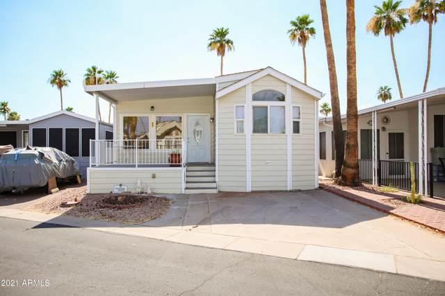 611 Debonair, Mesa, AZ 85205 (MLS #6258862) :: Yost Realty Group at RE/MAX Casa Grande