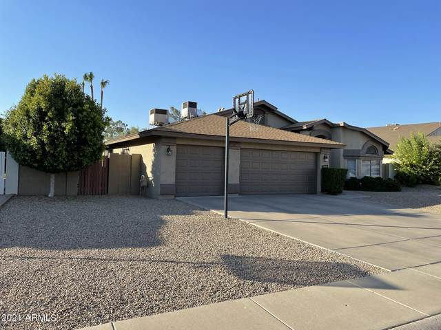 7008 W Bloomfield Road, Peoria, AZ 85381 (MLS #6258869) :: Yost Realty Group at RE/MAX Casa Grande