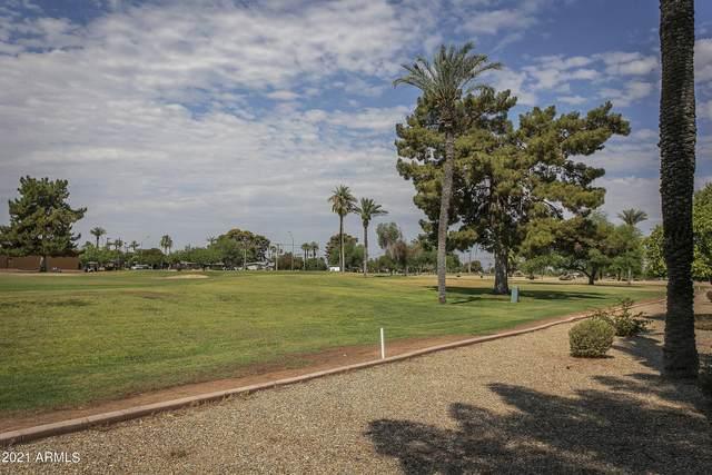 10815 N Fairway Court W, Sun City, AZ 85351 (MLS #6258991) :: Relevate | Phoenix