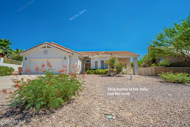 15552 E Sycamore Drive, Fountain Hills, AZ 85268 (MLS #6259002) :: Executive Realty Advisors