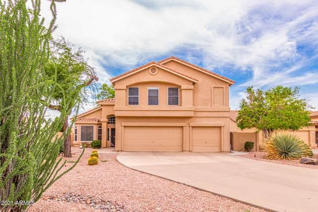 3450 N Platina Circle, Mesa, AZ 85215 (MLS #6259060) :: Yost Realty Group at RE/MAX Casa Grande
