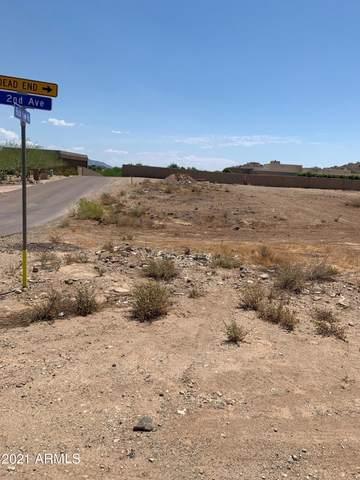 12 W Rockview Road, Phoenix, AZ 85085 (MLS #6259081) :: Yost Realty Group at RE/MAX Casa Grande