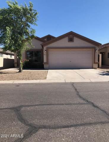 6773 E San Tan Way, Florence, AZ 85132 (MLS #6259136) :: Yost Realty Group at RE/MAX Casa Grande