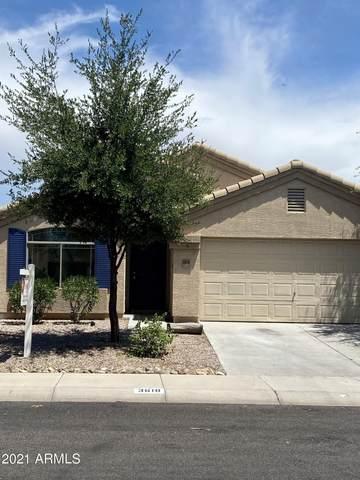 3618 N French Place, Casa Grande, AZ 85122 (MLS #6259181) :: Yost Realty Group at RE/MAX Casa Grande