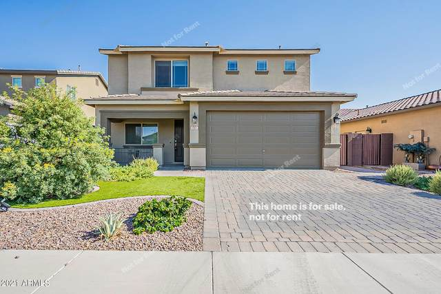 787 W Whistling Thorn Avenue, San Tan Valley, AZ 85140 (MLS #6259212) :: Yost Realty Group at RE/MAX Casa Grande