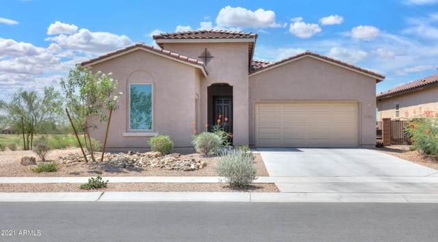 2595 E San Ricardo Trail, Casa Grande, AZ 85194 (MLS #6259224) :: Conway Real Estate