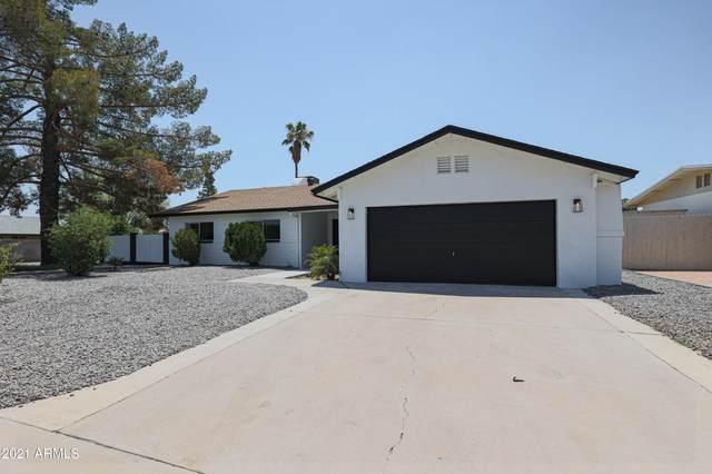 2939 E Corrine Drive, Phoenix, AZ 85032 (MLS #6259264) :: Yost Realty Group at RE/MAX Casa Grande