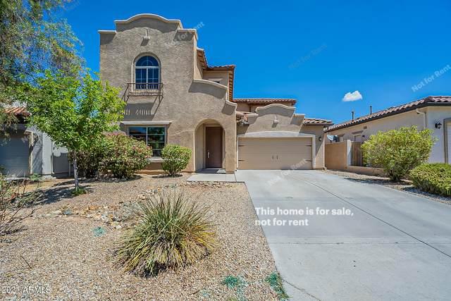 5522 W Andrea Drive, Phoenix, AZ 85083 (MLS #6259266) :: Howe Realty