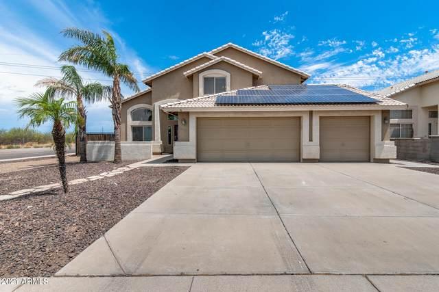 10894 W Alex Avenue, Sun City, AZ 85373 (MLS #6259309) :: Yost Realty Group at RE/MAX Casa Grande