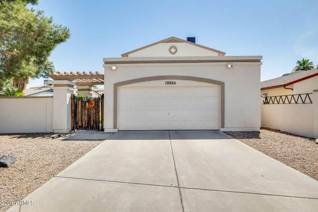 19665 N 48TH Lane, Glendale, AZ 85308 (MLS #6259323) :: Yost Realty Group at RE/MAX Casa Grande
