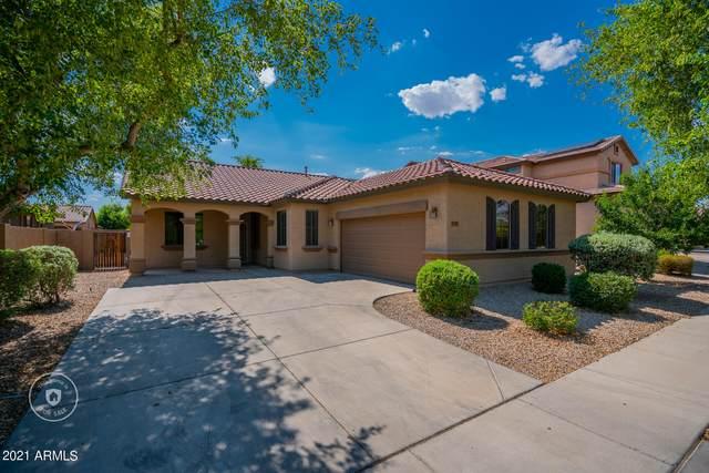 11896 N 145TH Lane, Surprise, AZ 85379 (MLS #6259388) :: Yost Realty Group at RE/MAX Casa Grande