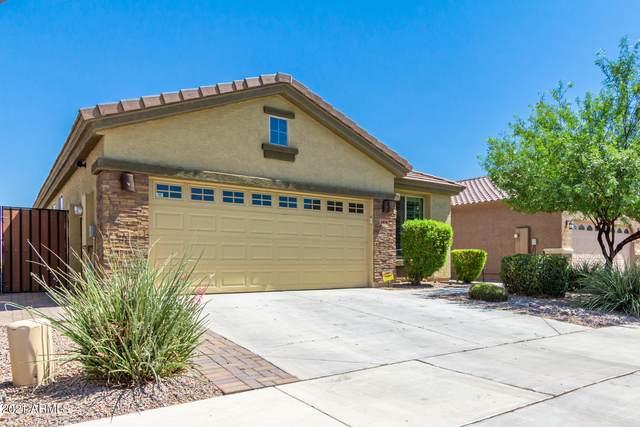 6858 W Charter Oak Road, Peoria, AZ 85381 (MLS #6259439) :: Yost Realty Group at RE/MAX Casa Grande