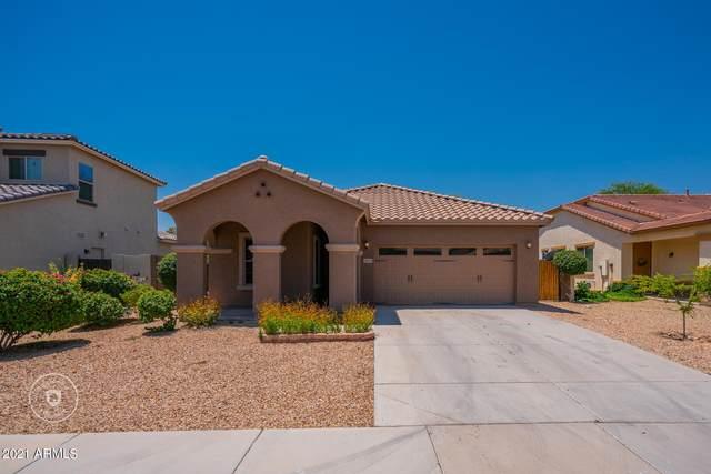 15615 W Devonshire Avenue, Goodyear, AZ 85395 (MLS #6259552) :: Yost Realty Group at RE/MAX Casa Grande