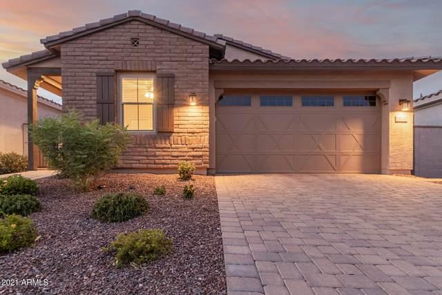 19748 W Devonshire Avenue, Litchfield Park, AZ 85340 (MLS #6259576) :: Long Realty West Valley