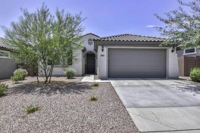 25662 N 161ST Avenue, Surprise, AZ 85387 (MLS #6259755) :: Yost Realty Group at RE/MAX Casa Grande