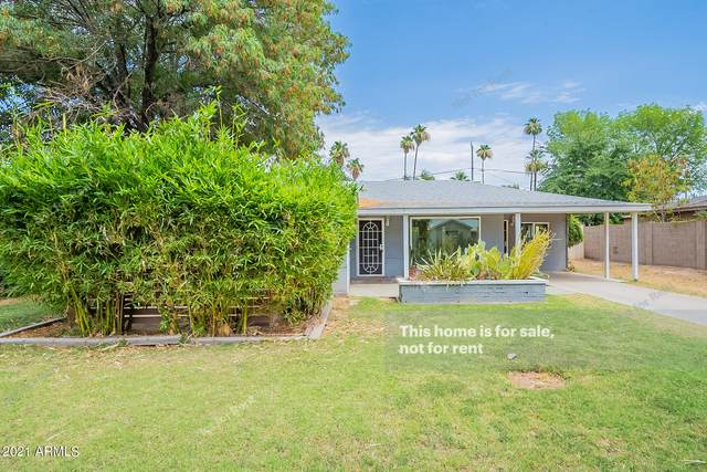 812 W Orangewood Avenue, Phoenix, AZ 85021 (MLS #6259815) :: Elite Home Advisors