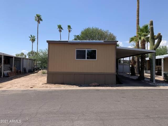 2340 E University Drive #90, Tempe, AZ 85281 (MLS #6259827) :: Arizona 1 Real Estate Team