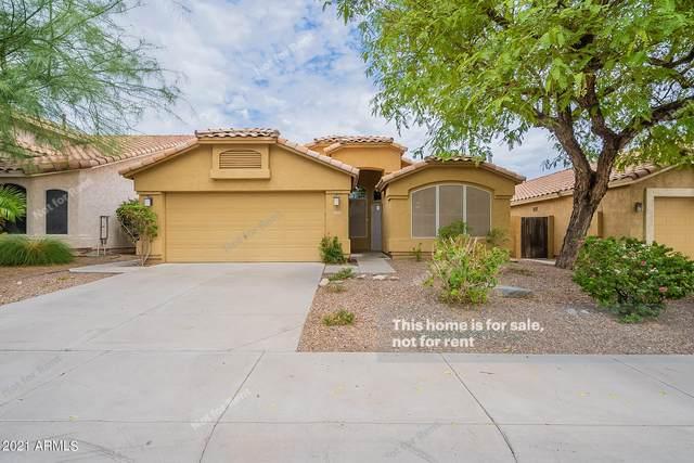 3232 E Brookwood Court, Phoenix, AZ 85048 (MLS #6259835) :: Devor Real Estate Associates