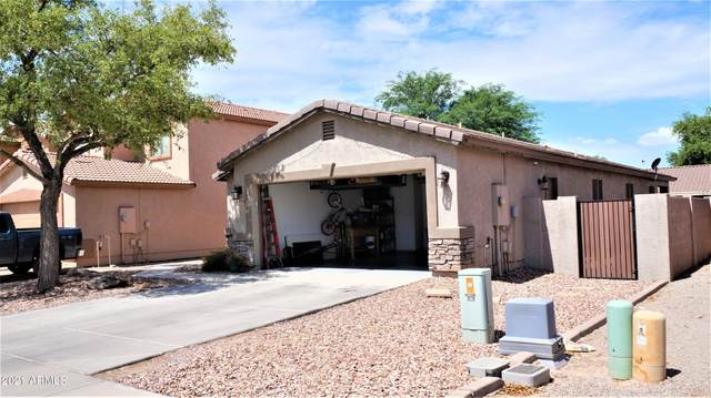 41134 N Cambria Drive, San Tan Valley, AZ 85140 (MLS #6259974) :: Conway Real Estate