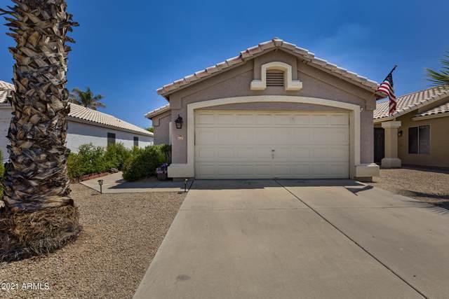 3367 E Kelton Lane, Phoenix, AZ 85032 (MLS #6260042) :: Yost Realty Group at RE/MAX Casa Grande