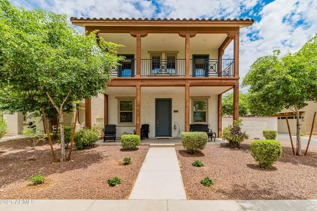 2519 N Riley Road, Buckeye, AZ 85396 (MLS #6260053) :: Nate Martinez Team