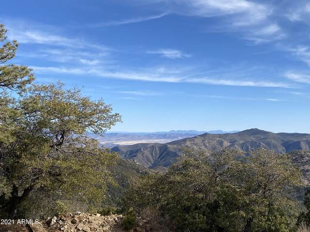 22868 S Towers Mountain Road, Crown King, AZ 86343 (MLS #6260096) :: Fred Delgado Real Estate Group