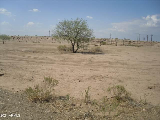 4780 E Mustang Drive, Eloy, AZ 85131 (MLS #6260114) :: Executive Realty Advisors