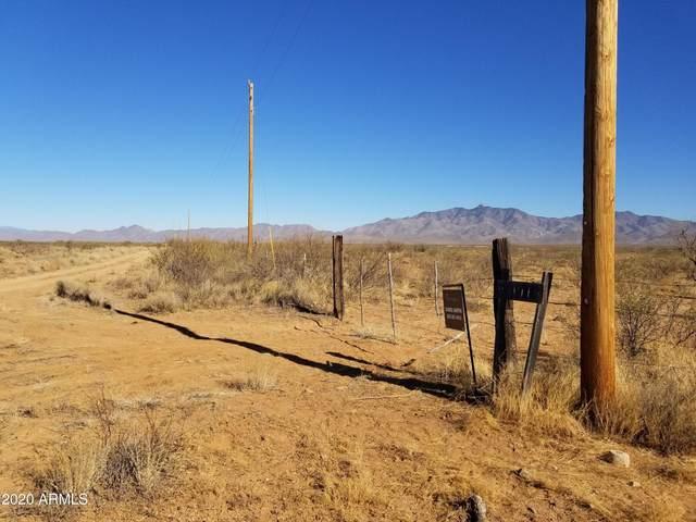 163 S Narita Lane, Willcox, AZ 85643 (MLS #6260162) :: Keller Williams Realty Phoenix