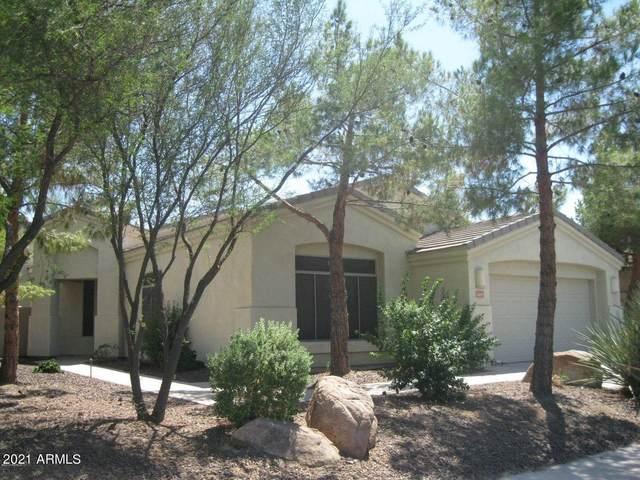 2209 E Valencia Drive, Phoenix, AZ 85042 (MLS #6260168) :: Yost Realty Group at RE/MAX Casa Grande