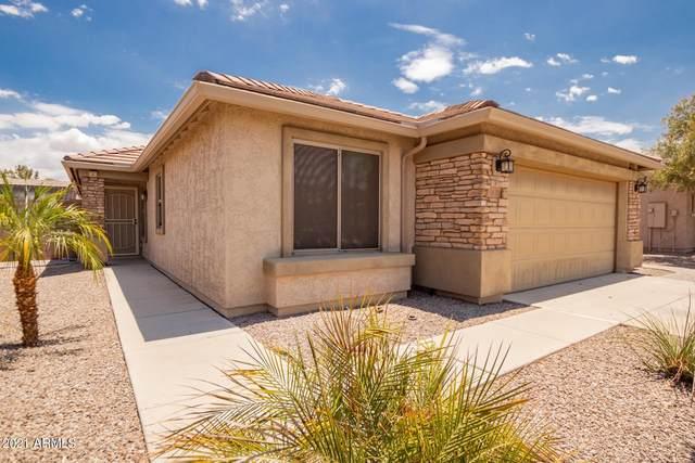 3637 S Garrison, Mesa, AZ 85212 (MLS #6260216) :: Yost Realty Group at RE/MAX Casa Grande