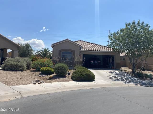 12268 N Gadwall Drive, Marana, AZ 85653 (MLS #6260220) :: Executive Realty Advisors