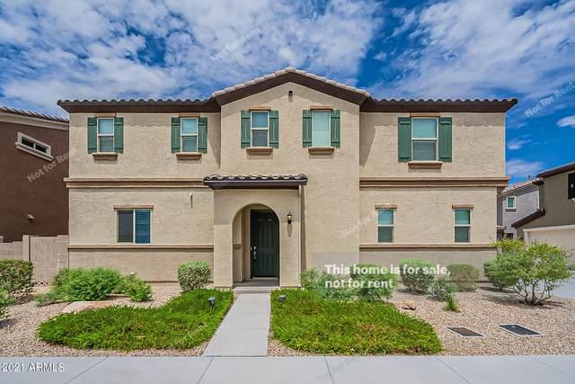 32630 N 50TH Street, Cave Creek, AZ 85331 (MLS #6260290) :: Yost Realty Group at RE/MAX Casa Grande
