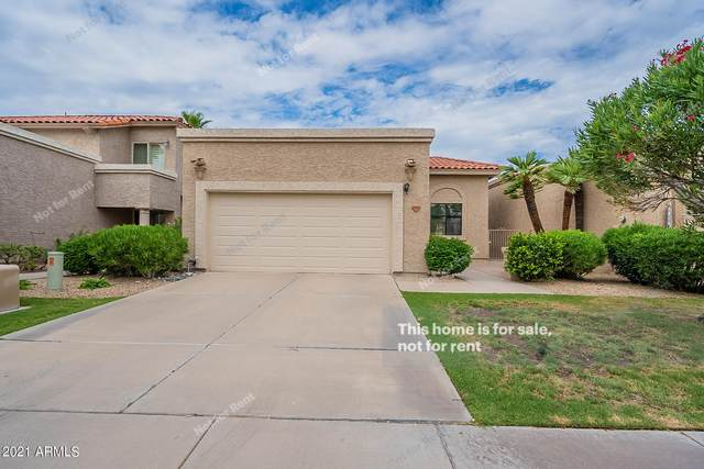 9762 N 105TH Place, Scottsdale, AZ 85258 (MLS #6260296) :: Yost Realty Group at RE/MAX Casa Grande
