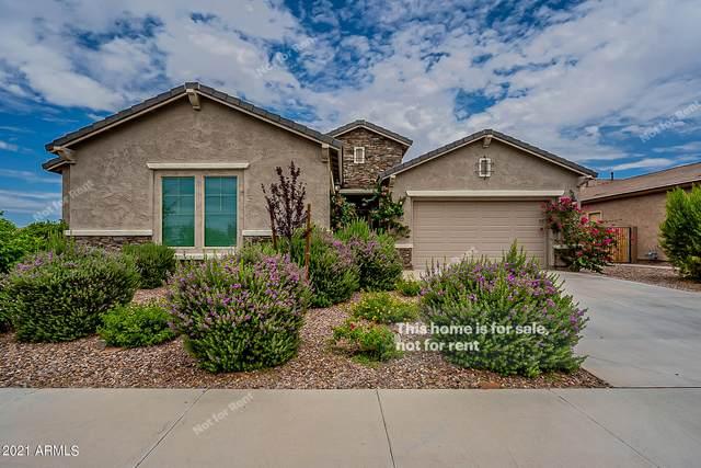 10918 E Tripoli Avenue, Mesa, AZ 85212 (MLS #6260313) :: Yost Realty Group at RE/MAX Casa Grande