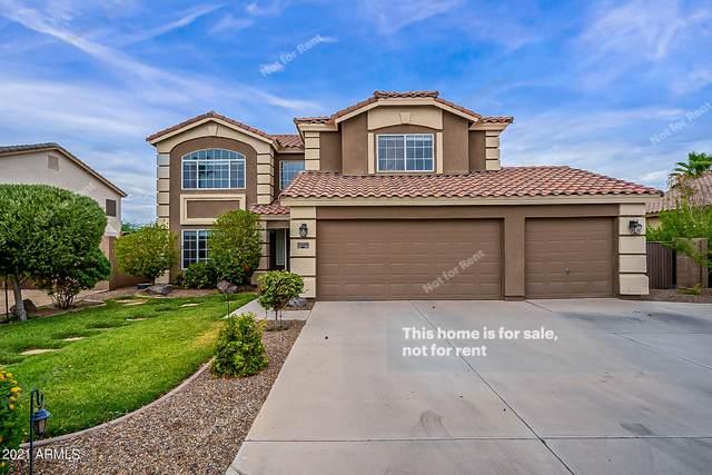 31660 N Royal Oak Way, San Tan Valley, AZ 85143 (MLS #6260444) :: Yost Realty Group at RE/MAX Casa Grande