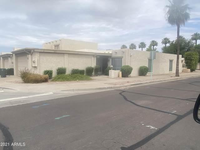 202 W Maya Drive, Litchfield Park, AZ 85340 (MLS #6260451) :: Arizona Home Group