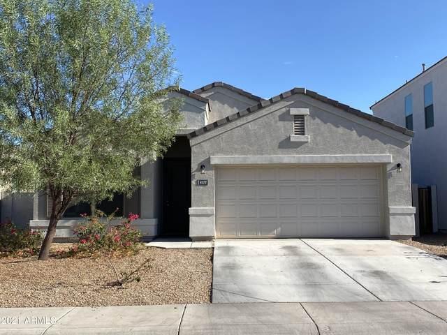 4177 W Maggie Drive, Queen Creek, AZ 85142 (MLS #6260476) :: Yost Realty Group at RE/MAX Casa Grande