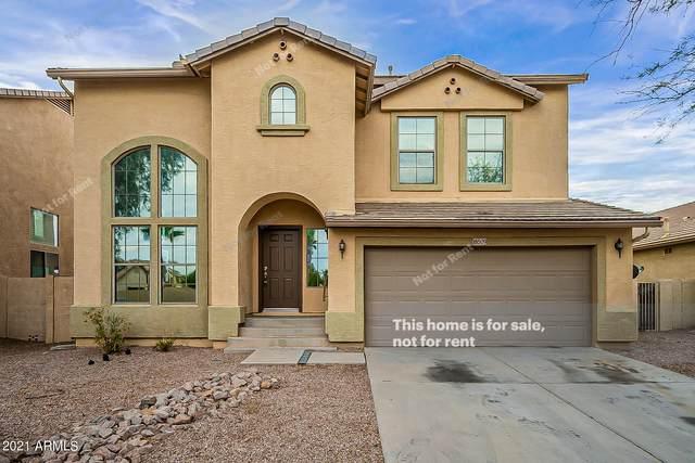 18509 N Larkspur Drive, Maricopa, AZ 85138 (MLS #6260578) :: Klaus Team Real Estate Solutions