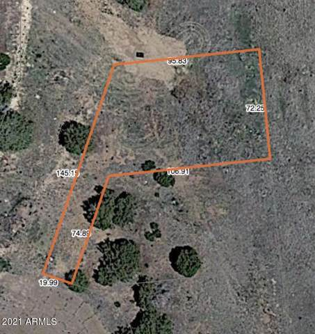 24 County Road 5099, Concho, AZ 85924 (MLS #6260618) :: The Newman Team