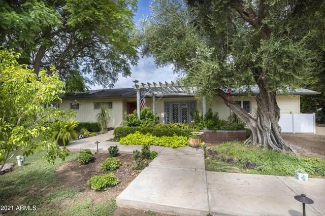 5336 N 6TH Street, Phoenix, AZ 85012 (MLS #6260620) :: Executive Realty Advisors