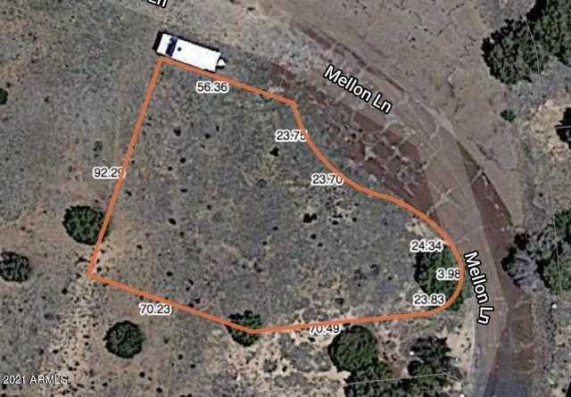 19 County Road 5099, Concho, AZ 85924 (MLS #6260623) :: The Newman Team