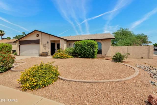 4764 E Olney Drive, Phoenix, AZ 85044 (MLS #6260657) :: Yost Realty Group at RE/MAX Casa Grande