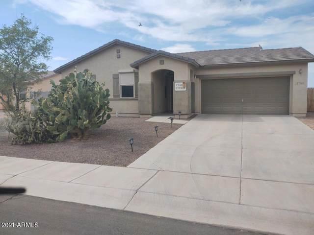 12700 W Diaz Drive #14, Arizona City, AZ 85123 (MLS #6260678) :: Executive Realty Advisors