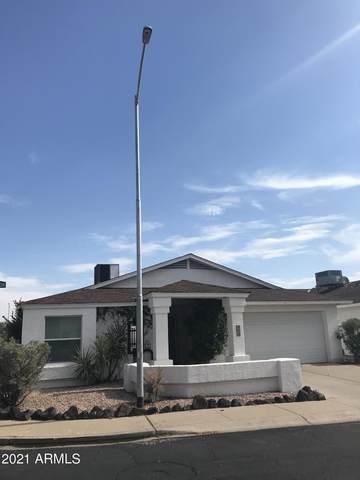 303 W Fellars Drive, Phoenix, AZ 85023 (MLS #6260824) :: Yost Realty Group at RE/MAX Casa Grande