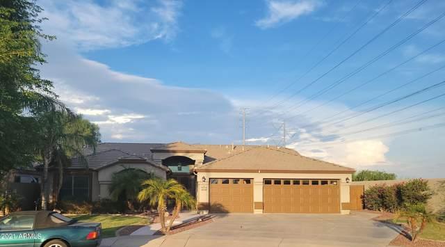 3135 S Patricio Circle, Mesa, AZ 85212 (MLS #6260854) :: Executive Realty Advisors