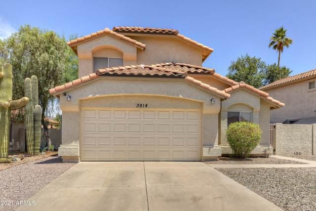 3914 E South Fork Drive, Phoenix, AZ 85044 (MLS #6260862) :: Yost Realty Group at RE/MAX Casa Grande