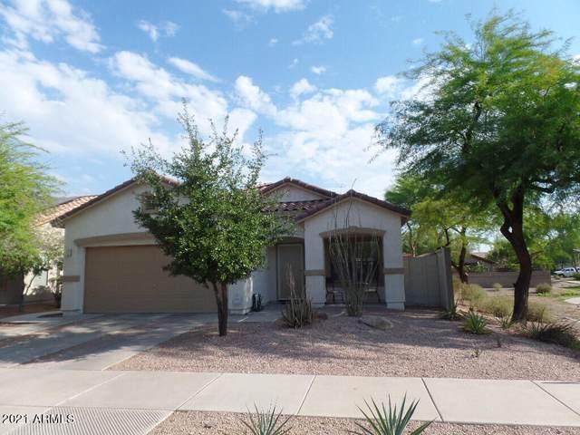 202 E Milada Drive, Phoenix, AZ 85042 (MLS #6260864) :: Executive Realty Advisors