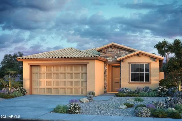 11784 S 54TH Lane, Laveen, AZ 85339 (MLS #6260865) :: Yost Realty Group at RE/MAX Casa Grande