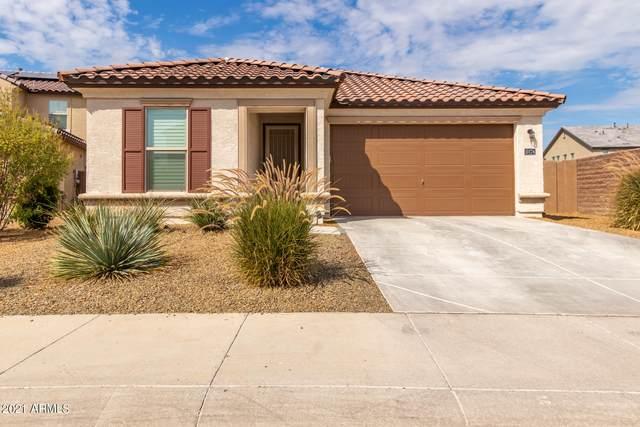 10174 W Los Gatos Drive, Peoria, AZ 85383 (MLS #6260885) :: Yost Realty Group at RE/MAX Casa Grande